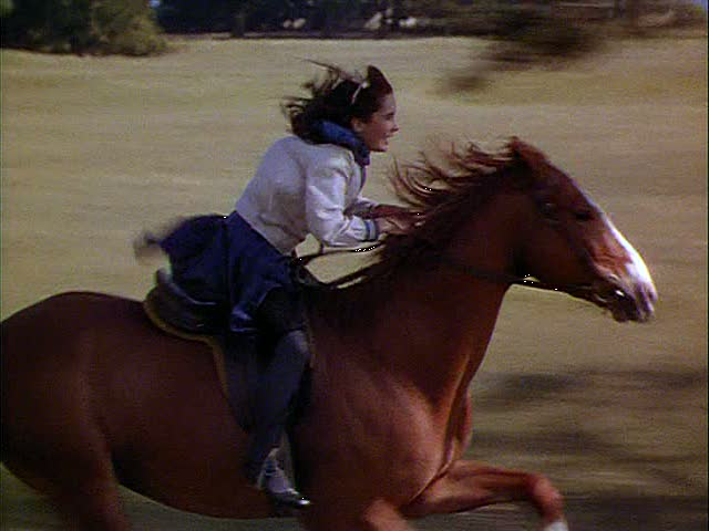 nationalvelvet-00075