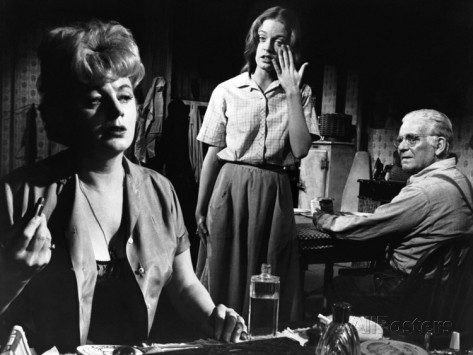 a-patch-of-blue-shelley-winters-elizabeth-hartman-wallace-ford-1965