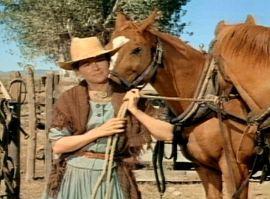 The Proud Rebel 11 Olivia de Havilland