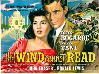 the-wind-cannot-read-320x240