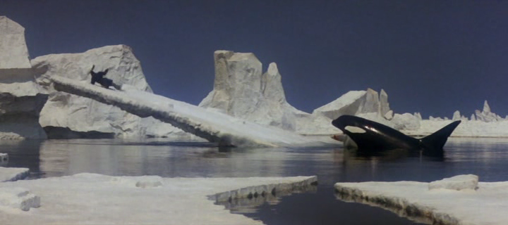 orca_-the-killer-whale-screenshot