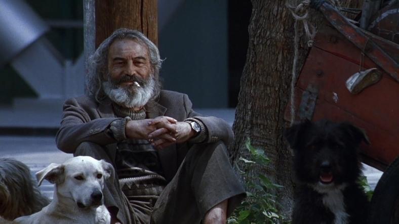 Amores-perros-2000-01-44-18